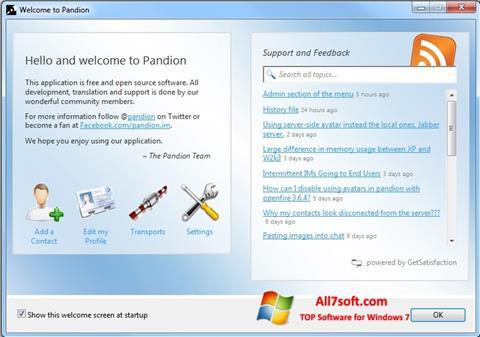 Screenshot Pandion Windows 7